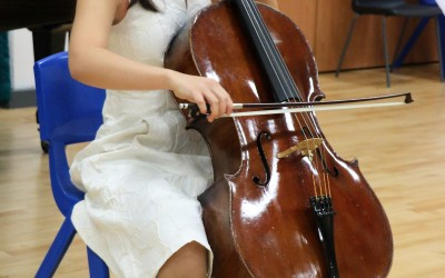 Winner of the HR Taylor Strings Prize
